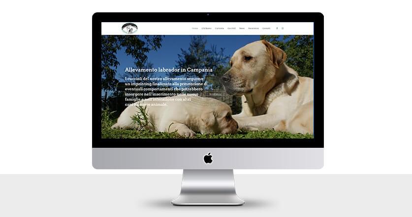 Mockup nuovo sito