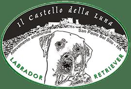 Logo allevamento labrador in Campania Castello della Luna